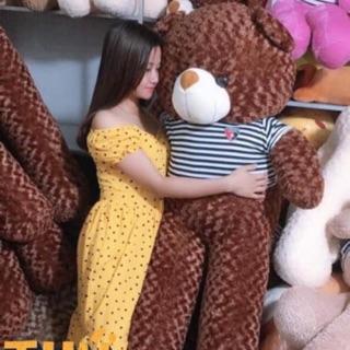 Gấu bông teddy khổ 1m5