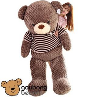 Gấu Bông Teddy Bear Mặc Áo Len Khổng Lồ – Khổ Vải 1m8 – Vải Nhung Siêu Mịn – Quà Tặng Valentine 14/2 Cho Nàng