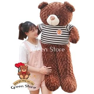 (Ảnh Thật 100%)-Gấu Bông Teddy 1M6 khổ vải, cao 1M4 Rẻ Vô Địch