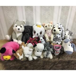 Combo chó bông hàng si 16-30cm ( nhắn tin để mua hàng nha )