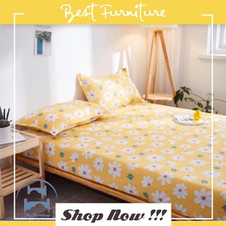 [GIÁ HOT] GA GỐI COTTON LIVING