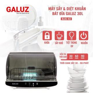 Máy sấy và diệt khuẩn bát đĩa Galuz dung tích 30L- hàng chính hãng thumbnail