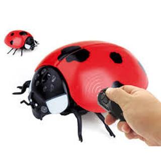 (Freeship) Trò chơi con bọ dùng điều khiển dành cho bé trai (kèm pin)