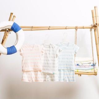 Bộ quần áo cộc tay đáp cổ tam giác kẻ lưới little love