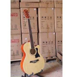 Guitar acoustic Takla