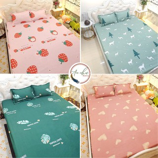 Bộ ga gối 💖m6/m8💖 drap giường poly, ga trải giường + 2 vỏ gối nằm đơn giản An Như Bedding