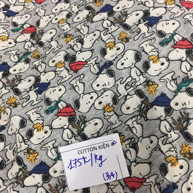 vải Huong Thao 230k