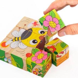 Đồ chơi gỗ – hình khối đa chiều