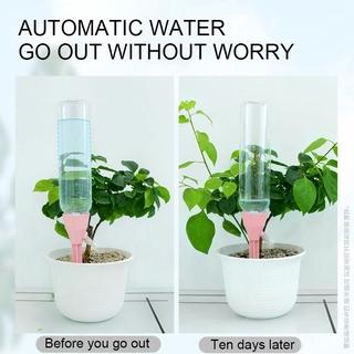 Thiết bị tưới nước tự động tiện lợi dành cho trồng cây cảnh 3