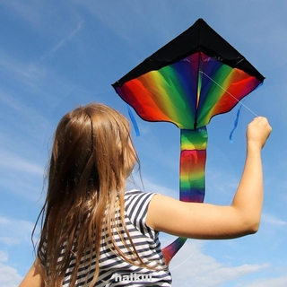 Tools Durable DIY Lawn Park Garden Outdoor Playing Home Triangle Kite