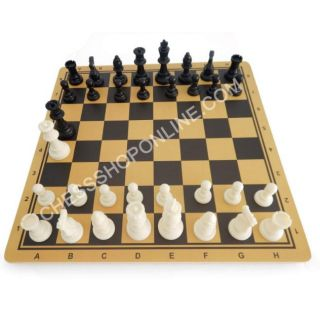 Bộ cờ vua nhựa tiêu chuẩn và bàn gỗ (tặng kèm hậu mỗi bên)