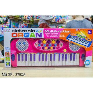Đàn organ 3702A