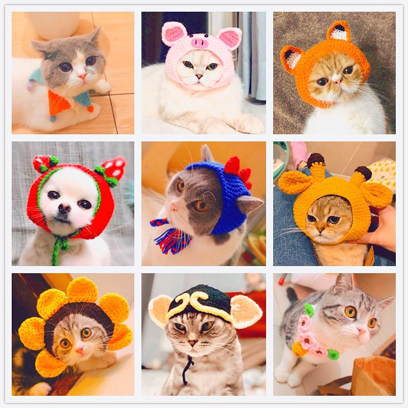 Mũ len cho Pet