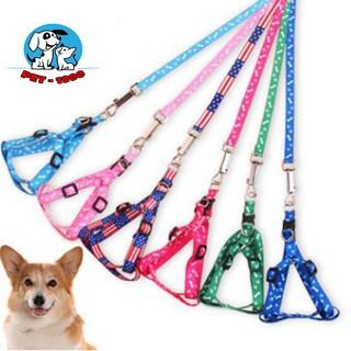 Đai Dắt Chó Mèo Thú Cưng Đi Dạo thumbnail