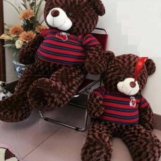 Gấu bông nâu tetddy 1m2