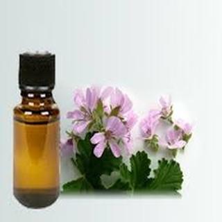 Combo 3 lọ tinh dầu thiên nhiên 10ml thơm phòng như sả chanh,cà phê, trầm, hoa nhài, oải…