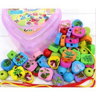 [ĐỒ CHƠI GIÁO DỤC] Đồ chơi xâu hạt gỗ hộp trái tim 55 chi tiết chủ đề tự chọn cho bé