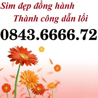 SIM VINAPHONE SỐ ĐẸP PHONG THỦY, SIM THẦN TÀI LỘC PHÁT