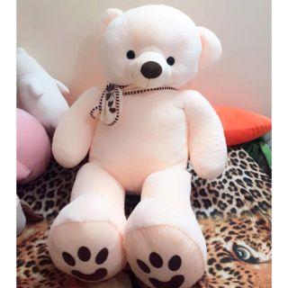 Gấu teddy Thái
