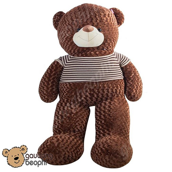 GẤU BÔNG TEDDY MÀU SOCOLA KHỔ VẢI 1M2 - GẤU TEDDY