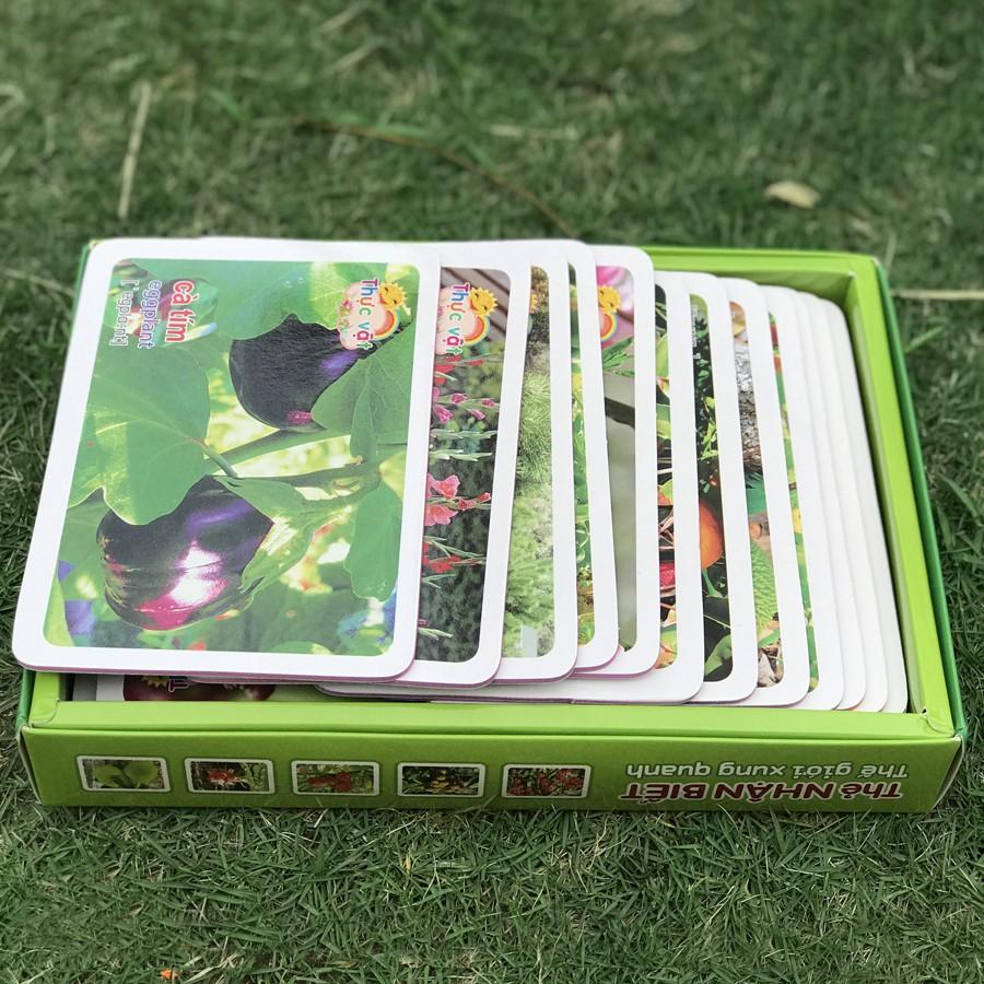 Sách - Thẻ nhận biết thế giới xung quanh - Thực vật (Minh Long)