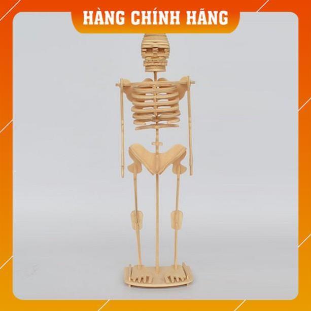 [Free Ship - Hàng Chính Hãng] Mô hình Skeleton Bộ xương người để trẻ tự học STEM