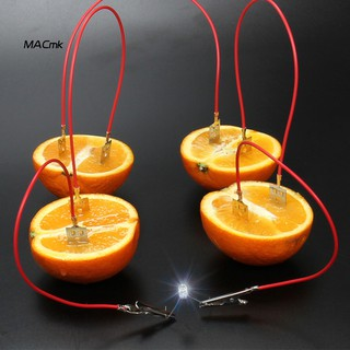 MAC_Fruit Battery Light Diode Generator Science Experiment Kit Student Education Toy