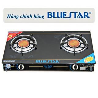 Bếp gas hồng ngoại Bluestar NG-5890C, Điếu gang đúc nguyên khối
