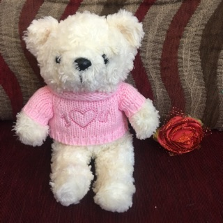 Gấu bông ( gấu mặc áo hồng )