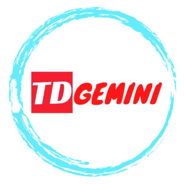TD.Gemini - Đồ chơi công nghệ