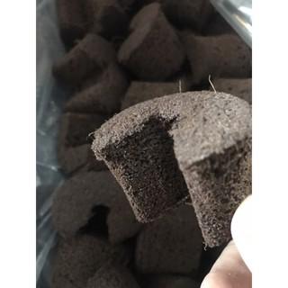 Mút ươm kie hữu cơ nhập khẩu Hà Lan