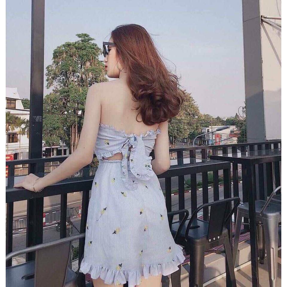 Đầm Cúp Nơ Lưng Thêu Hoa Đủ Màu