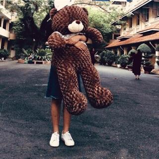 Gấu bông teddy độ dài thật 1M2| Giá tận xưởng | hình ảnh thật