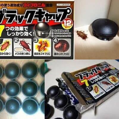 Viên Diệt Gián Của Nhật Bản Hộp 12 Viên