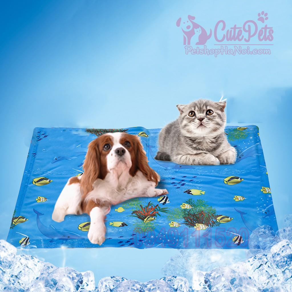 Đệm mát mùa hè Elite Pet Cooling Mat dành cho chó mèo - CutePets Phụ kiện thú cưng Pet Shop Hà Nội - 3365206 , 1159600058 , 322_1159600058 , 159000 , Dem-mat-mua-he-Elite-Pet-Cooling-Mat-danh-cho-cho-meo-CutePets-Phu-kien-thu-cung-Pet-Shop-Ha-Noi-322_1159600058 , shopee.vn , Đệm mát mùa hè Elite Pet Cooling Mat dành cho chó mèo - CutePets Phụ kiện t