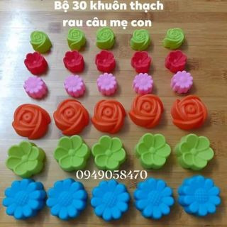 Bộ 30 khuôn thạch rau câu silicon hoa  mẹ con gồm 15 khuôn mẹ 5cm và 15 khuôn con 3cm hàng đẹp