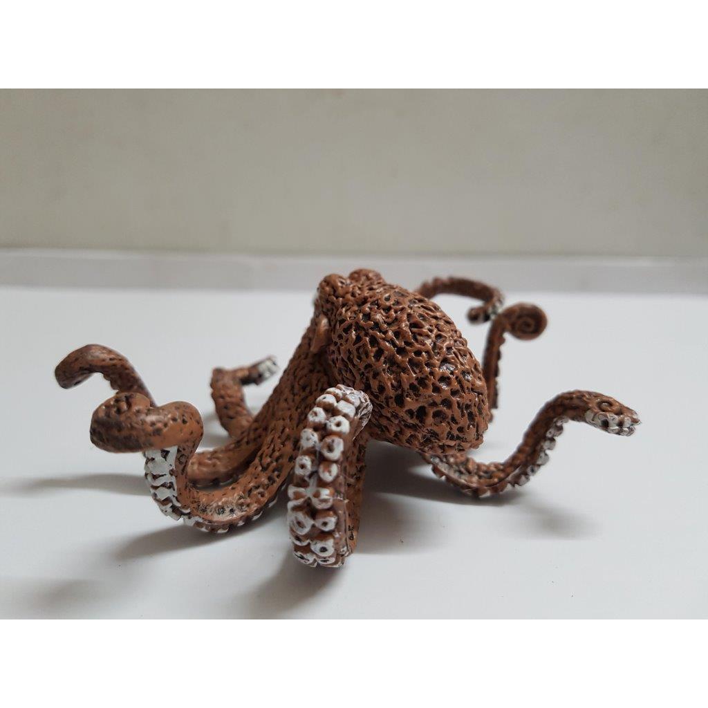 Mô hình bach tuột biển