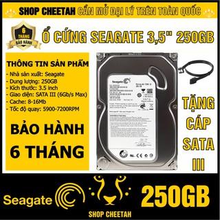 """HDD 3.5"""" Seagate 250GB – Ổ cứng PC chính hãng – Mới 99% – Bảo hành 6 tháng – Tháo từ máy đồng bộ nhập khẩu"""