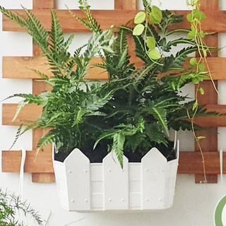 Chậu nhựa hàng rào treo tường, chậu trồng cây, rau tiện lợi