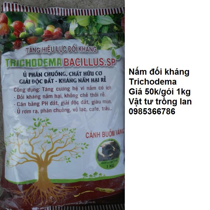 1 cân Nấm đối kháng Trichodema gâm ủ xử lý phân bón cho lan và cây trồng