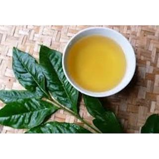 Combo 5 Cây trà xanh - chè xanh thái nguyên cao 30cm -Không giao dc 19 tỉnh Miền Nam thumbnail