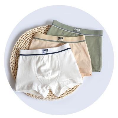 Family Underwear