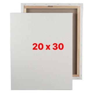 Khung toan/canvas căng sẵn (20 x 30)