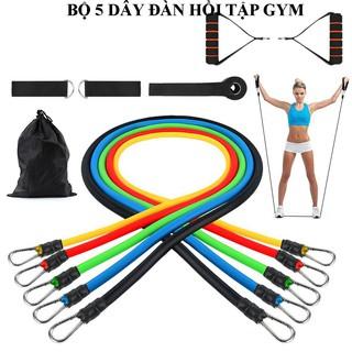 Dụng cụ tập gym, Dây đàn hồi tập gym, Dây ngũ sắc tập gym, Dụng cụ tập yoga, Đồ tập gym, Máy tập thể dục đa năng.