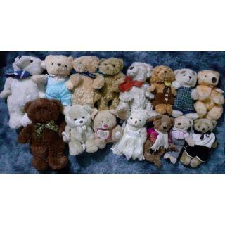 set 15 con teddy size 30cm -50cm