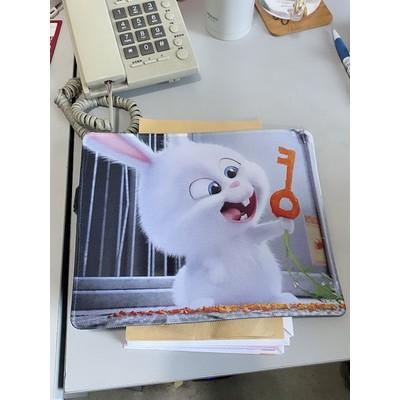 Miếng lót chuột hoạt hình siêu dễ thương full 27 mẫu bàn di chuột cực hot 2021 bộ sưu tập 1