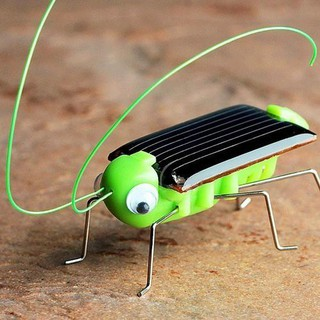 Grasshopper Model Solar Toy Children Outside Toy Kids Education