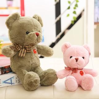 Thú Nhồi Bông Hình Gấu Teddy Màu Sắc 01 Dễ Thương