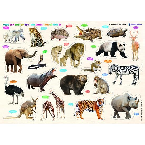 Bảng Gỗ Cùng Con Chơi Và Học - Động vật hoang dã