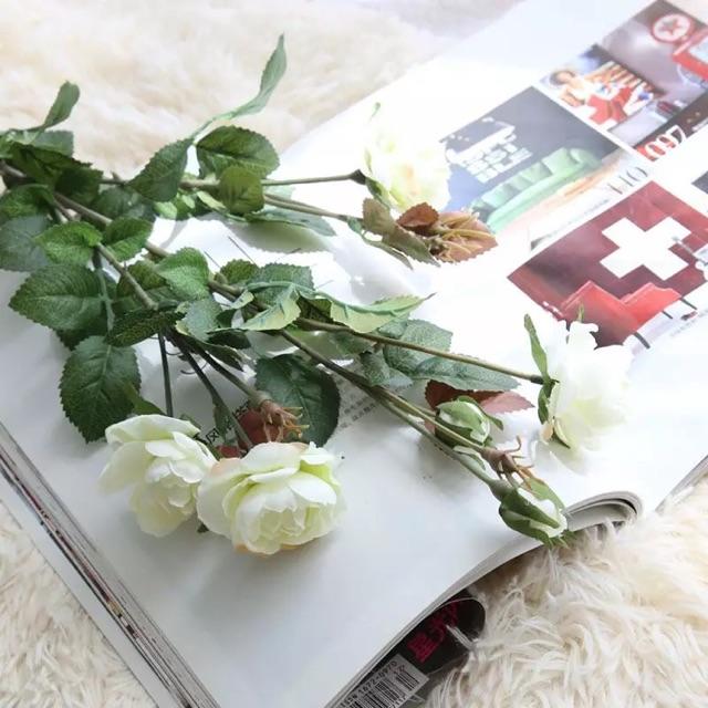 Hoa hồng lụa giống hoa thật